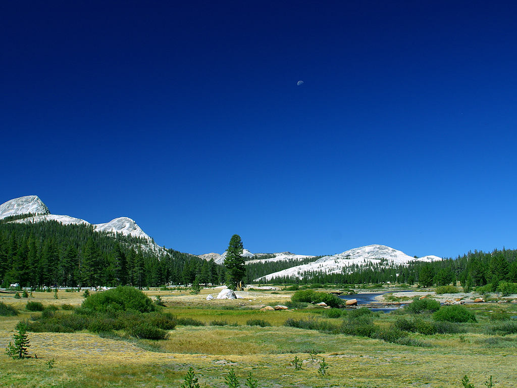 Tuolumne Meadows Yosemite